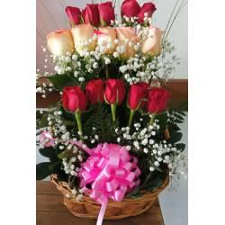 Rosas y Peluche